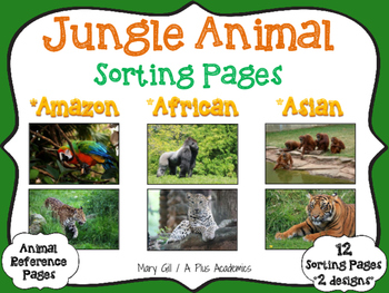 First  - Second - Third Grade - Jungle Animal Sorting