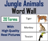Jungle Animals Word Wall Cards