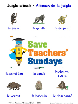Jungle Animals in French Worksheets, Games, Activities and Flash Cards