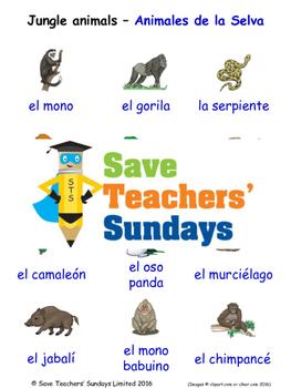 Jungle Animals in Spanish Worksheets, Games, Activities and Flash Cards