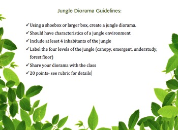 Jungle Diorama Guidelines and Rubric