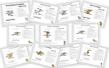 Jungle Investigations and Mini Books
