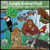 Jungle Rainforest Animal Clip Art Pack {Messare Clips and Design}