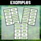 Jungle Theme Word Wall ~ 90 Sight Words *now editable!*