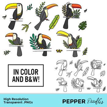 Jungle Toucans - Doodle Clipart - Transparent PNGs