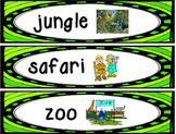 Jungle Vocabulary Cards