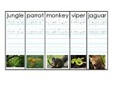 Jungle Vocabulary and Handwriting