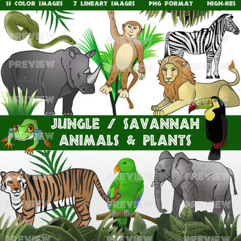 Jungle and Savannah Clip Art