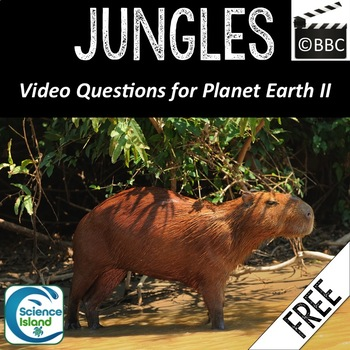 Jungles Video Questions from Planet Earth II Series