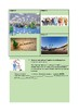 Junior Business Economics Worksheet - Participants in the economy
