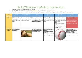 Solo/Gardner's Activity Matrix