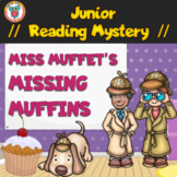 Junior Reading Comprehension Mystery Activity - Worksheets