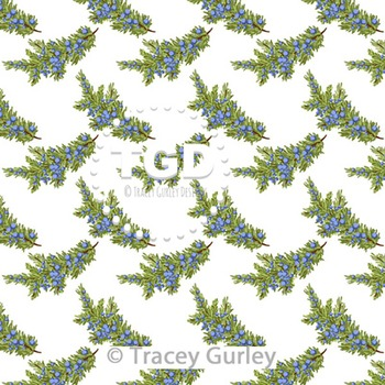 Juniper Berry Branch on White digital paper Printable Tracey Gurley