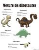 Mesure - Les dinosaures