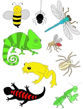 Just Creepy Crawlies Clip Art 2: Bugs, Insects, Amphibians, Reptiles and More!