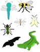 Just Creepy Crawlies Clip Art 2: Bugs, Insects, Amphibians