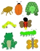 Just Creepy Crawlies Clip Art: Bugs, Insects, Amphibians, Reptiles and More!