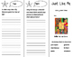 Just Like Me Trifold - Storytown 4th Grade Unit 4 Week 2