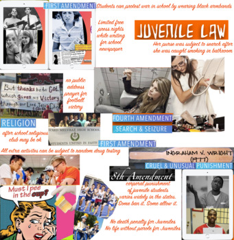 Constitution Protection for Juveniles - Juvenile Rights - FREE POSTER
