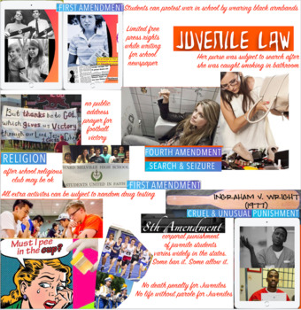 Juvenile Law - Constitution - Supreme Court Case Law - Minors - 81 SLIDES