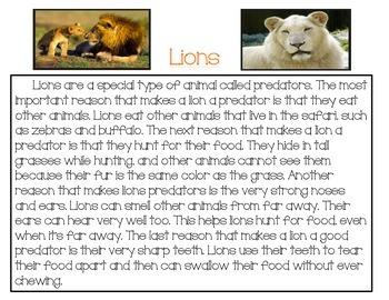 K-1 Close Reading: Lions
