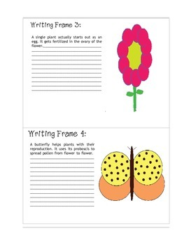Spring into Summer Plant Literacy Fun