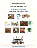 K - 2 Life Cycle of Apple Tree - ADD or ADHD - Reading - Science