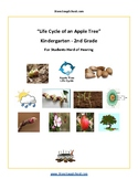 K - 2 Life Cycle of Apple Tree - Students Hard of Hearing - Science