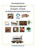 K - 2 Life Cycle of Apple Tree- TBI Traumatic Brain Injuries - Reading - Science