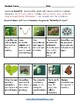 K - 2 Life Cycle of Butterfly -  Students with Hearing Impairments - Science