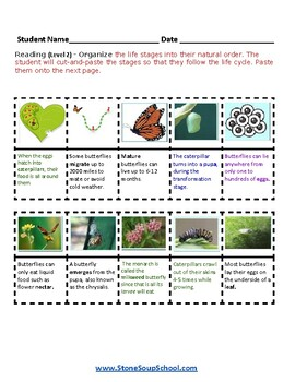 K - 2 Life Cycle of Butterfly -  Students with Visual Impairments - Science