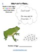 K - 2  Life Cycle of Frog - for Gifted and Talented Students