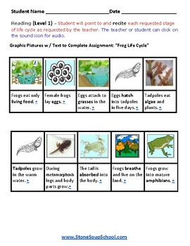 K - 2  Life Cycle of Frog -  with Visual Impairments - Science