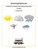K - 2  Weather for  Students w/ Traumatic Brain Injuries - Reading - Science
