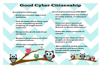 K-5 Elementary Cyber Citizenship / Computer Rules Poster Owl Theme