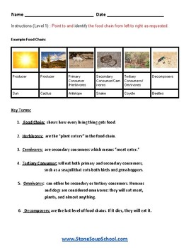 """3 - 8th Grade """"Food Chains"""" - For Students with Learning Disabilities - Science"""
