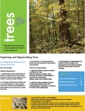 K-8 Integrated Art and Science Lesson Plan on Nature Walks and Trees