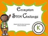 K Ecosystem STEM challenge