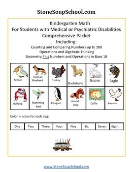 K - Medical/Psychiatric:Geometry, Algebraic,Base 10,Measure& Data,Counting to100