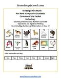 K - New Hampshire: Geometry, Algebraic, Base 10, Measure & Data, Counting to 100