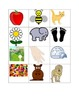 K is for Kissing a Cool Kangaroo Alphabet Picture Cards