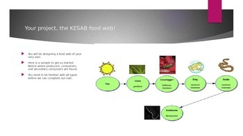 KESAB FOOD WEB ORGANISMS