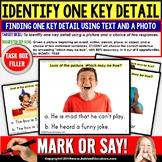 KEY DETAILS Reading Comprehension Task Cards TASK BOX FILLER - Special Education