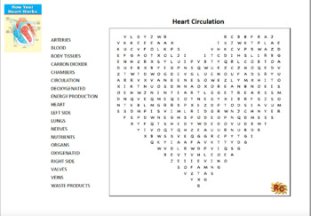 KS2 Science Life Processes & Living Things - The Heart & Circulation Word Search