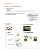 Year 3 Science LIVING THINGS & LIFE PROCESSES