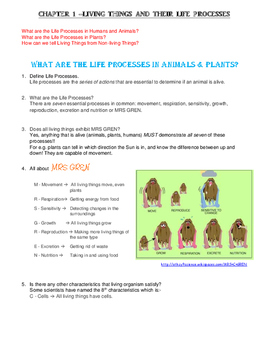 KS2 Science LIVING THINGS & LIFE PROCESSES Revision Notes