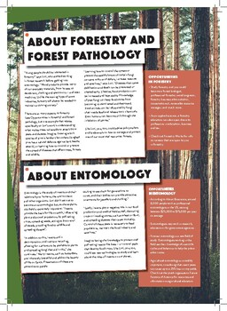 KS3-4/Grades6-10:How can insects be harmful and beneficial to trees and forests?