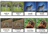 3 Part card - Wild Animals (Eng-Ind)