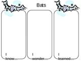 KWL:  Bats