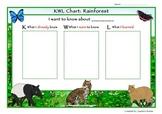 KWL Chart: Rainforest